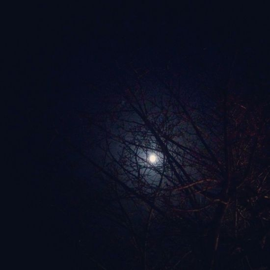 Full Moon Beautiful Moon  Moonlight Taking Photos Ready To Sleep CoolNight