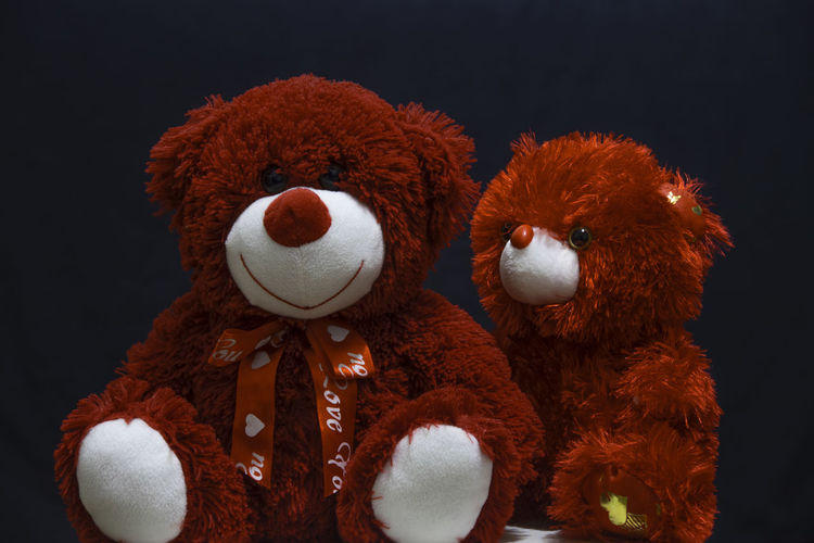 Close-up of stuffed toy against black background
