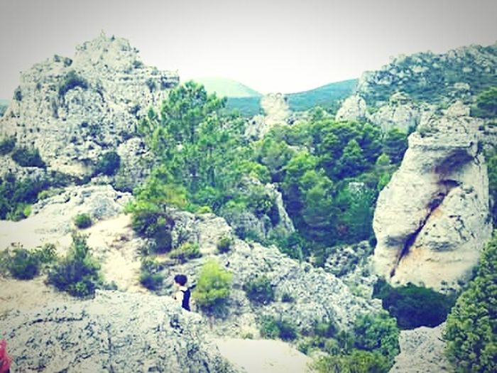 First Eyeem Photo France Paysage Forest Montagne Montain  Weeks