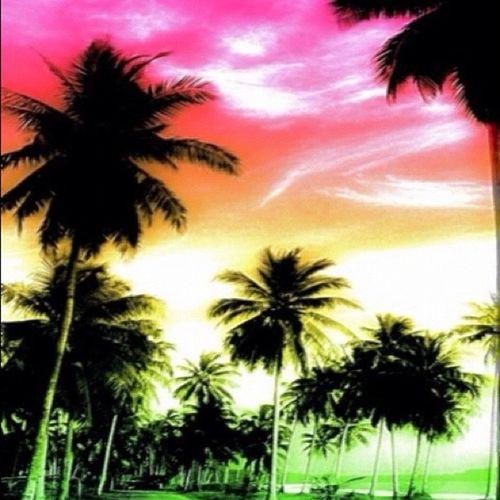 Instamob Ilovethesky Skylovers Instamobbers Gmy Poolplsyers Funnythingsforu Insapgan Gi_indonesia Gf_indonesia  Genginsapgan Gang_family