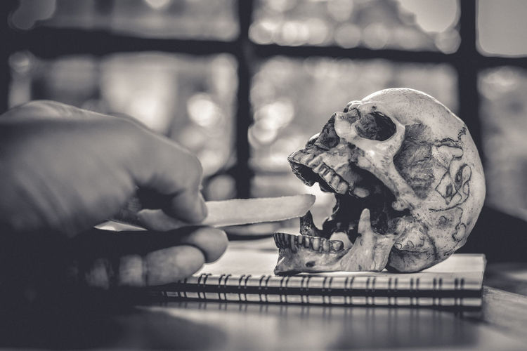 Cropped Image Of Hand Holding French Fries By Human Skull At Table