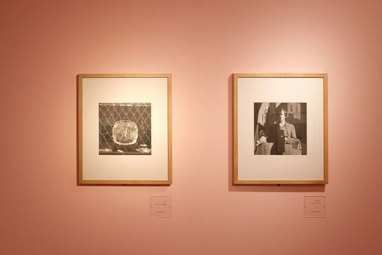 Millennial Pink Picture Frame Exhibition Photograph No People Art And Craft Vivian Maier Exposition Inspirational