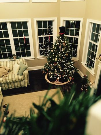 Christmas Tree Focus Trees Xmas Merry Christmas! Christmas Christmas Lights Christmastree