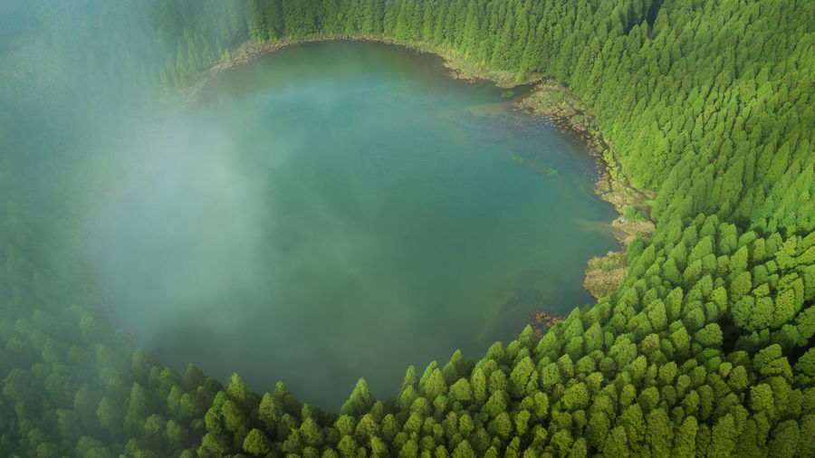 Aerial view of lagoa do canario lagoon surrounded by pine forest located on sao miguel, azores