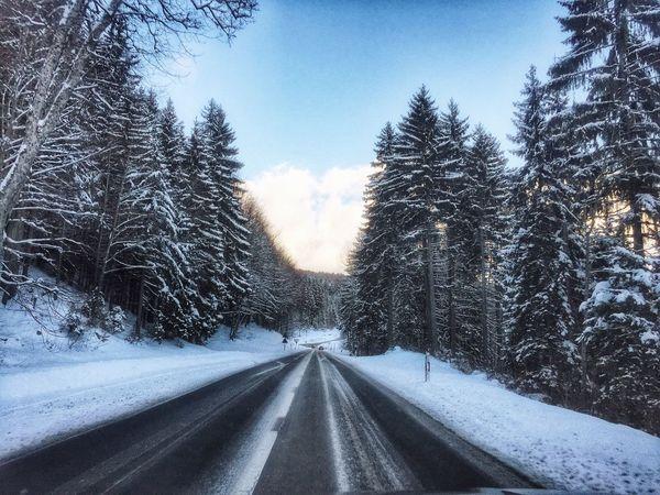Neige Hiver Froid Glacial Froid Sur La Route Forest Foret Road IPhoneography IPhone Vaud Suisse Romande Suisse