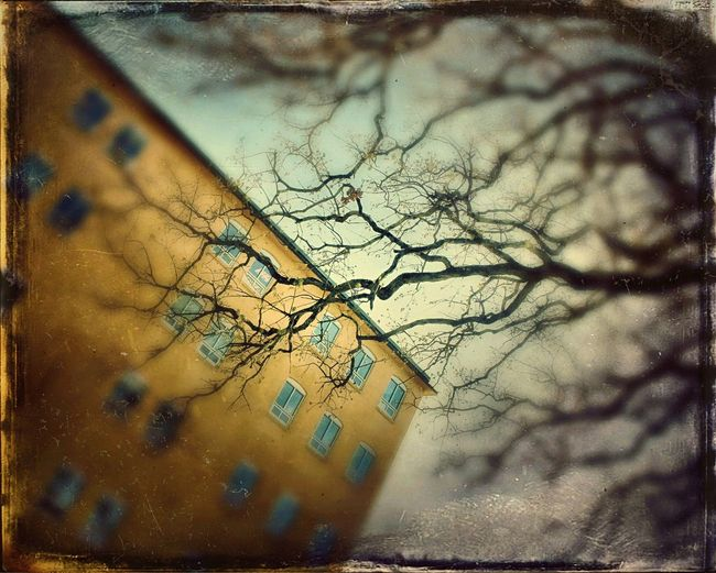 Abandoned lunatic asylum. Lonliness Abandoned Forgotten Clouds And Sky Wall Window Outdoors Spring Architecture Walking Around Textures And Surfaces Check This Out Taking Photos Weathered Decrepit Decay How Do We Build The World? We Are Still ALIVE Taken For Granted Trees Colors Family Secrets