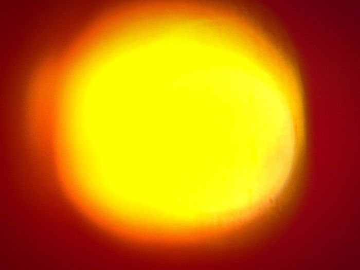 Spotlight Yellow Orange Color Backgrounds Abstract Circle No People Geometric Shape Burning Colored Background Vibrant Color Close-up Heat - Temperature Glowing