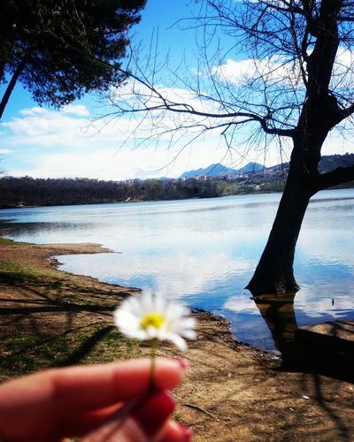 first eyeem photo Spring Started flower Park lake Tree On The Watter Tirana Al EyeEmNewHere