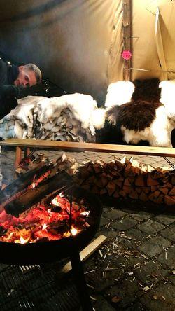 Fire Sheepwool Same  Jul Christmastime Oslo