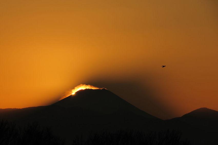 Setting Sun Sunset Sunshine Bird Sky Mt.Fuji Shadow EyeEm Nature Lover