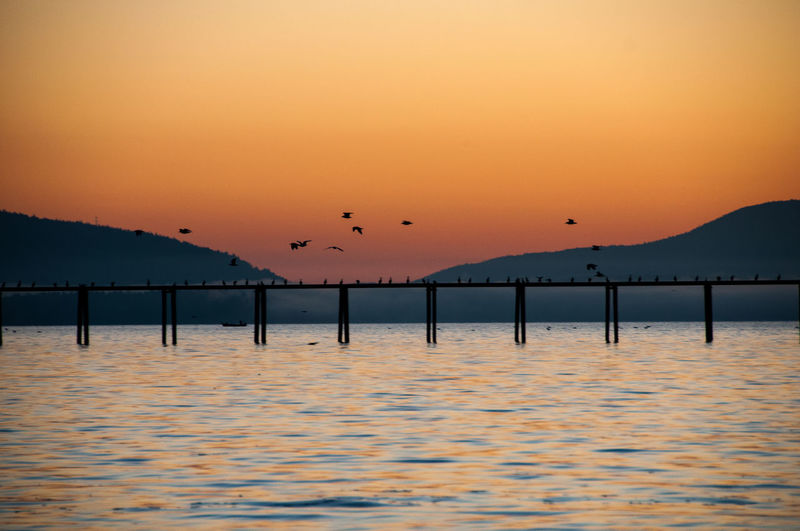 Quiet at Dusk Pier Animals In The Wild Bay Beauty In Nature Bird Dusk Flock Of Birds Flying Mountain Nature No People Outdoors Scenics Silhouette Sky Sunset Water Waterfront