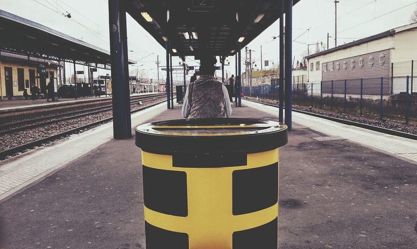Aujourd'hui j'ai pris une inconnue en photo derrière une poubelle. Voici le résultat Taking Photos Public Transportation Simplicity Ordinary Day