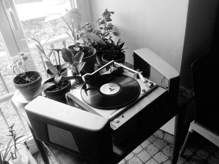 Giradischi Giradiscos Record Player Records Avilo Fotoavilo Biblioteca B.E.Maineri Toirano Toirano