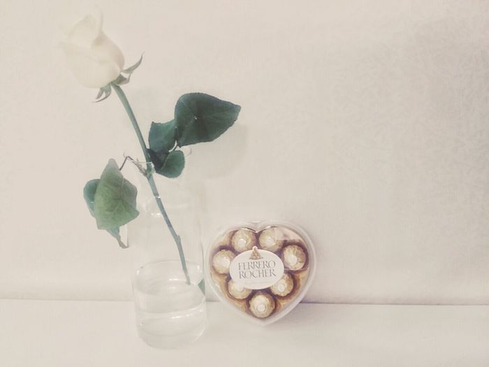 Welcome Back  Present for Girlfriend Smartphone Photography From My Point Of View Being Romantic White Rose Chocolate 欢迎回来 礼物 for 女朋友 in Seoul Korea
