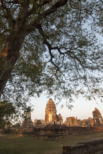Ancient Civilization Lopburi Thailand Lopburi Art Lopburi Location No People Place Of Worship Spirituality Travel Destinations Tree