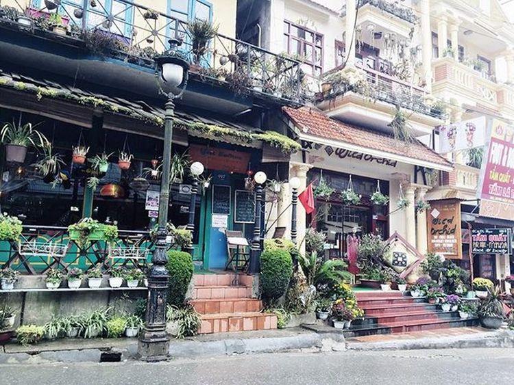 Phố Tây trên Sapa 😌😌 Beautiful LaoCai Vietnam Loveit 😜