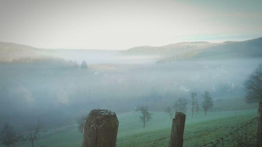 Kleines Dörfchen im Nebel Buitifull Sitters Chilling Picoftheday Love Nature First Eyeem Photo