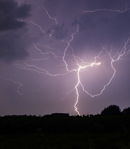 Beauty In Nature Danger Dramatic Sky Electricity  Forked Lightning Illuminated Landscape Lightning Low Angle View Nature Night No People Outdoors Power In Nature Scenics Sky Storm Storm Cloud Thunderstorm Weather