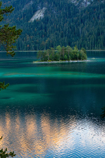 Bavaria Eibsee Tadaa Community Beauty In Nature Day Forest Idyllic Lake Land Mountain Nature No People Non-urban Scene Outdoors Plant Reflection Reflections In The Water Scenics - Nature Tranquil Scene Tranquility Tree Turquoise Colored Water Waterfront