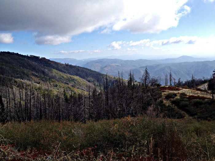 Mt Palomar California