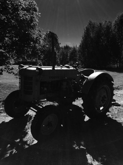Transportation Tree Land Vehicle Mode Of Transport Old-fashioned Day Outdoors Sky Country Road Rural Scene Weathered Tractor