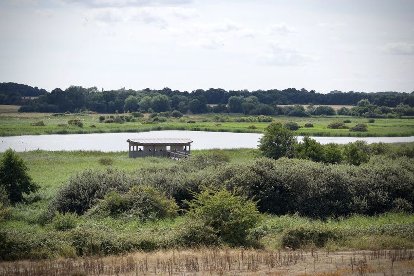 Bird Hide East Anglia RSPB Day Environment Field Grass Green Color Growth Lake Land Landscape Minsmere Nature No People Non-urban Scene Outdoors Plant Scenics - Nature Sky Tranquil Scene Tranquility Tree Water