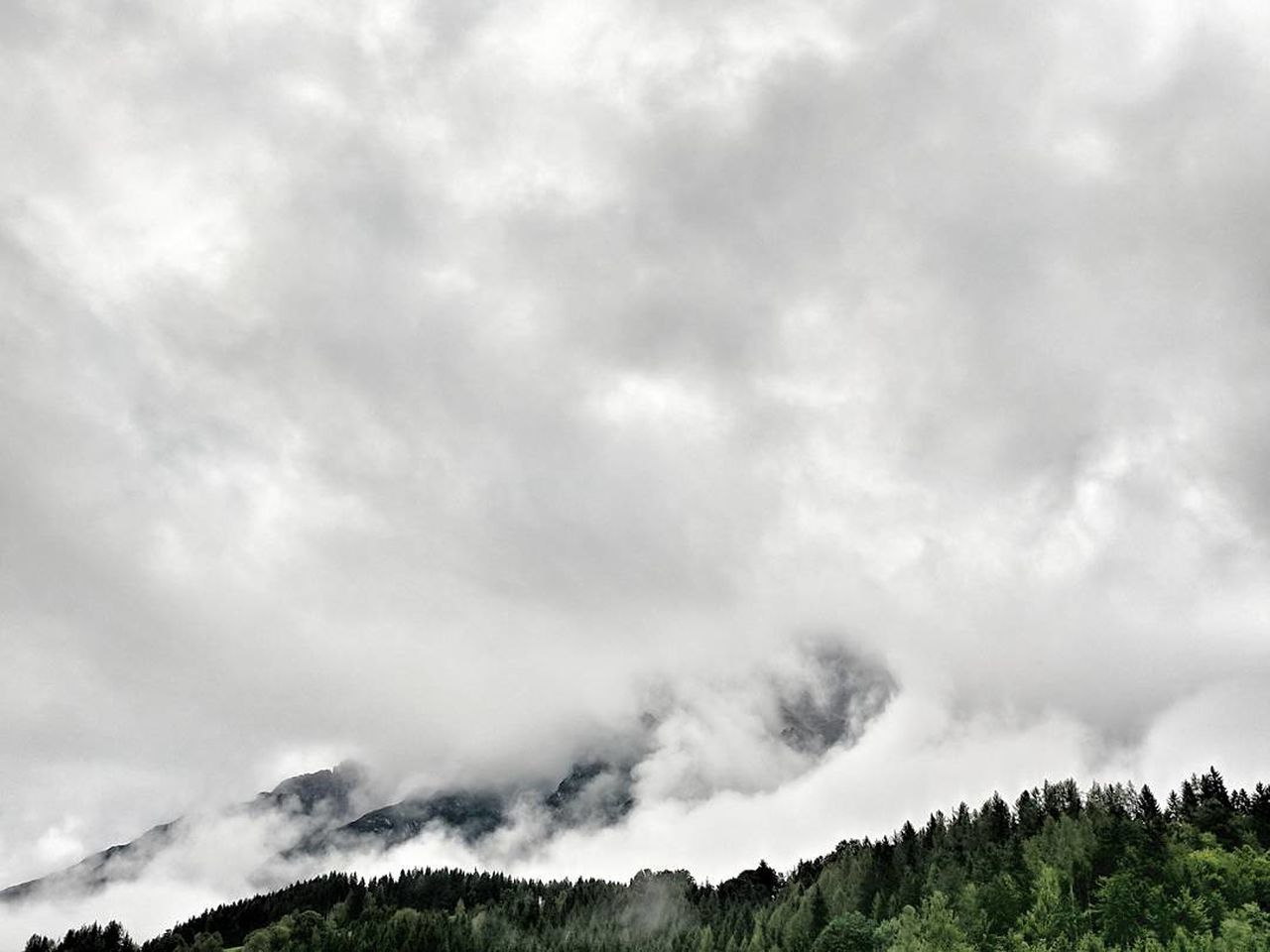 tree, sky, nature, cloud - sky, forest, scenics, beauty in nature, mountain, outdoors, no people, pine tree, landscape, day