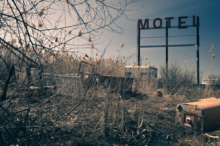 I took this shot for a futur project on Route 66 Abandoned Places Bare Tree Built Structure Canada Deterioration Historic Historical Sights Information Sign Junk Junk Art Junkyard Motel Motel Sign No People Outdoors Photo Project Quebec Route 66 Saint-Hilaire Vegetation