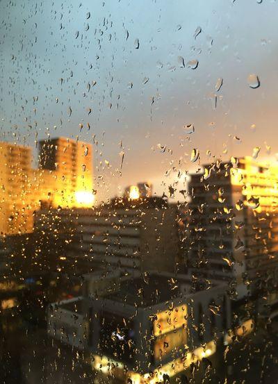 Raindrops in Rotterdam Raindrops Rain On Window Sunlight And Rain City Life Cityscape City Sunset Through The Window The Architect - 2017 EyeEm Awards