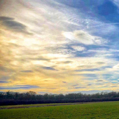 Clouds sky Field Cloud - Sky Dramatic Sky Sunset Beauty In Nature Agriculture Tranquil Scene Landscape Nature Tranquility Freshness Sunlight Sky No People Day Scenics Growth Outdoors Rural Scene Fragility
