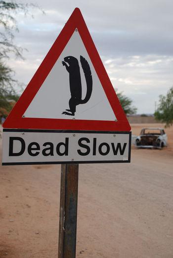 Roadsign. Solitaire, Namibia Africa African Danger Dead Slow Desert Desert Life Funny Namib Desert Namibia Namibian Roads Roadsign Roadsigns Roadtrip Slow Solitaire, Namibia Travel Travel Photography Traveling Traveling In Africa Travelphotography