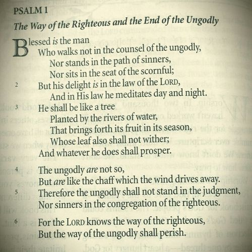 Good Morning , Words Of Wisdom... Wordoftheday , WordoftheLord , Hollyness , Bible Verses