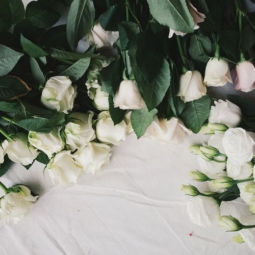 비오는날 출근시간에 야심차게 꽃시장 다녀오고나니.. 온집안에 꽃향기와 비냄새가 오묘하게 섞인것이.. '약'한 기분?처럼 오묘..하게 좋다. Itsrainingalldaytoday whiteroses white instaflower 꽃스타그램 beautiful 일상