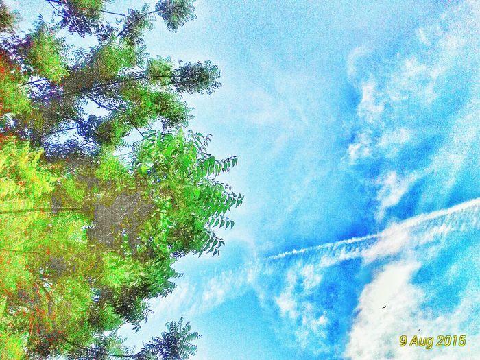 Sky Sky And Clouds Eye Em Around The World EyeEmMalaysia The Environmentalist - 2015 EyeEm Awards Snapseed Editing