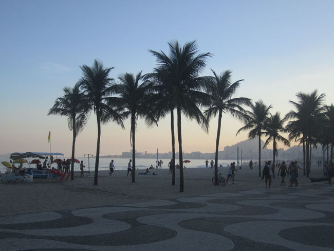 Brasil Brazil Coastline Day Growth Large Group Of People Nature Ocean Outdoors Palm Tree Person Rio De Janeiro Scenics Sea Sky Summer Tourism Tranquil Scene Tranquility Tree Vacations Water