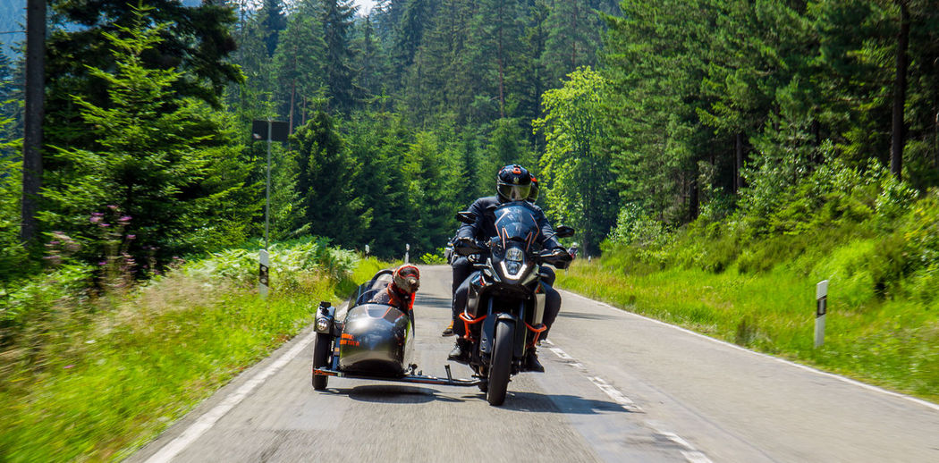 Man with dog riding motorcycle on road