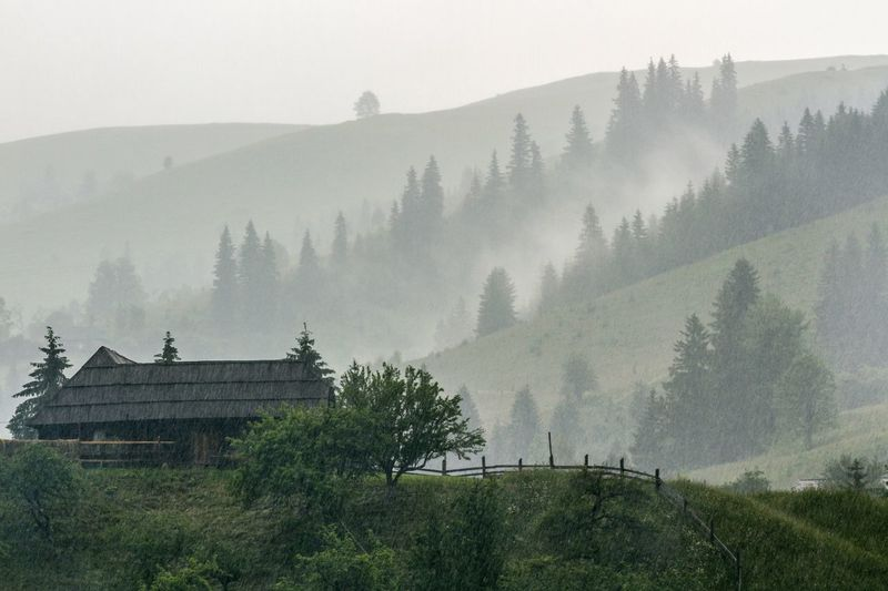 Rainy day in Carpathian mountain village Carpathians Carpathian Mountains Rain Rainy Days Tree Mountain Nature No People Beauty In Nature Fog Outdoors Landscape Scenics Tranquility Architecture Day Sky The Traveler - 2018 EyeEm Awards