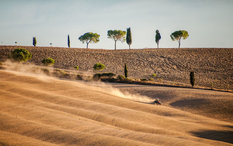 Dusty trail Agriculture Agriculture Animal Themes Autumn Beauty In Nature Brown Day Farmer Field Fields Growth Italy Landscape Motion Nature Outdoors People Rural Scene Sky The Great Outdoors - 2017 EyeEm Awards Tractor Tree Tuscany