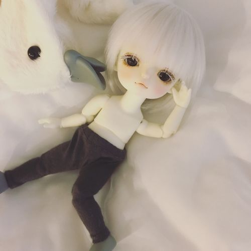 Bjd Doll Withdoll Cute