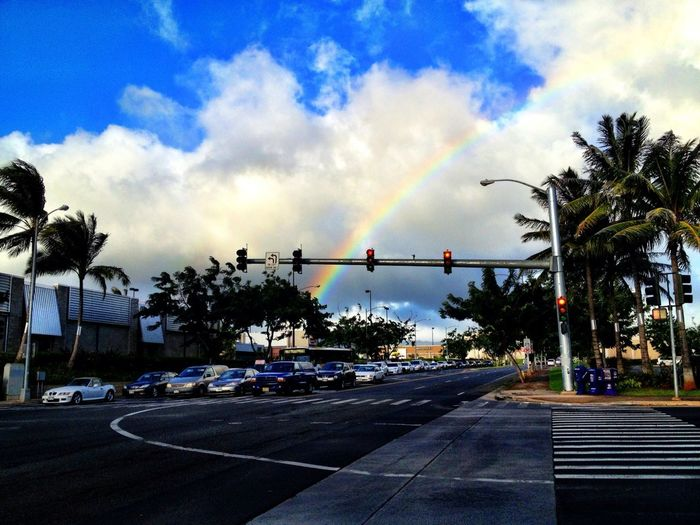 Rainbow XD