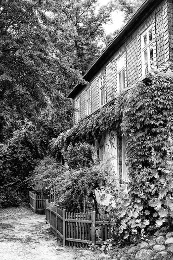 Architecture Black & White Black And White Blackandwhite Exterior House No People Pfaueninsel