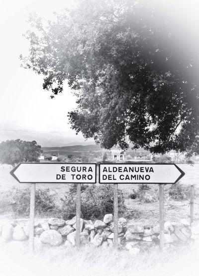 Blackandwhite On The Road Photography Extremadura