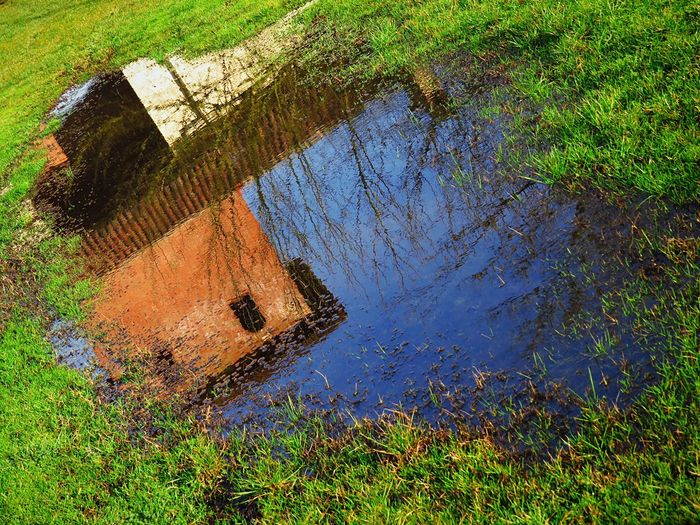 reflection Castle Grass EyeEm Best Shots EyeEm Selects Water Reflaction Reflaction Plant Water Nature Reflection Day No People Growth Beauty In Nature Lake Puddle Tree Outdoors Grass High Angle View Standing Water Green Color Sunlight Tranquility Wet