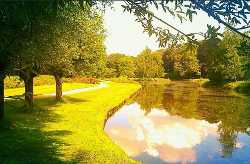 Reflections Nature_collection Park Holland