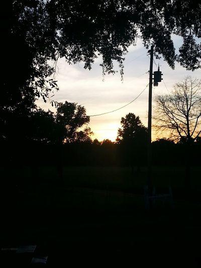 Beautiful sunset Enjoying Life