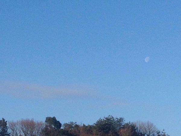 Moon Daytime Moon Sky