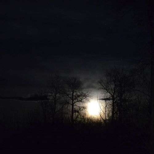 Full moon that was out couple weeks ago. Fullmoon Moon Silhouette Nightsky Natgeo Northernbc Destinationbritishcolumbia Imagesofcanada