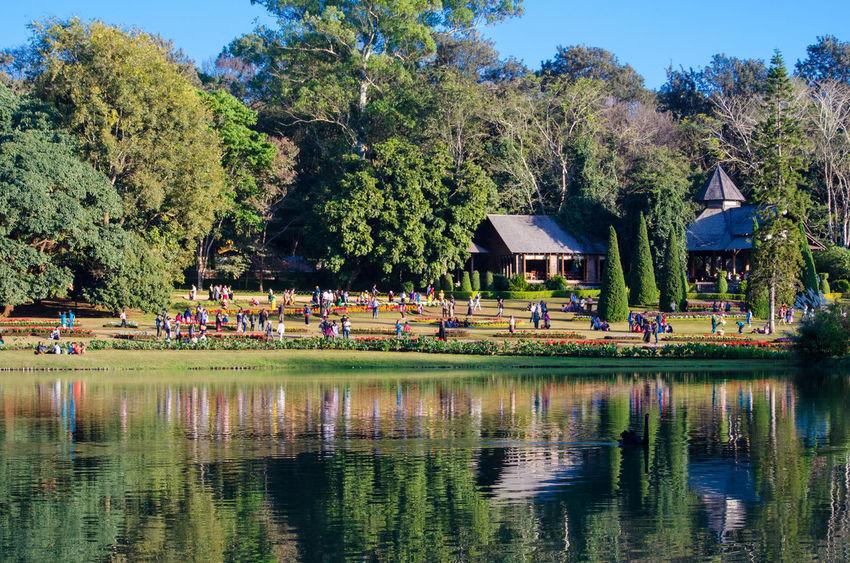 #birmania #botanicgarden #burma #Myanmar Architecture Beauty In Nature Reflection Scenics Travel Destinations Tree Water On The Water Myanmarphotos Myanmar Nature's Diversities Fine Art Photography