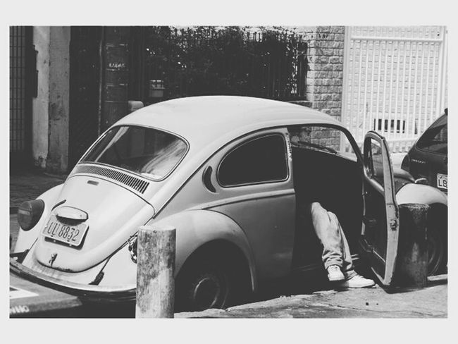 Beetle Beetle Collection Old Beetle Beetle Clasic Vintage Cars Car Black And White Monochrome