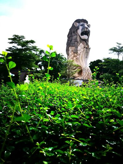 Singapore View Sculpture Statue Outdoors Day Sky Tree Nature No People Myhome Neighborhood Map